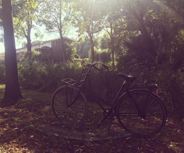 Bikerideamsterdam.jpg